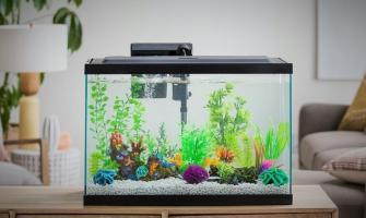 20 советов по сборке вашего нового аквариума