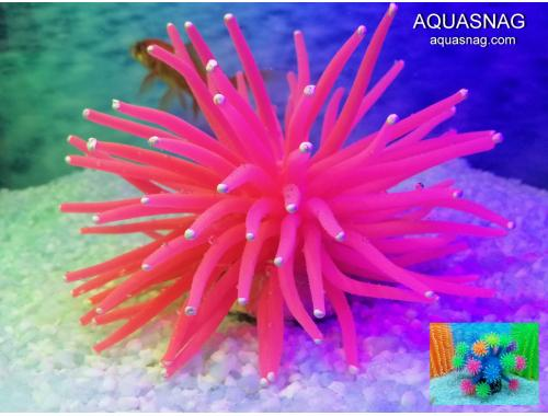 Фото Актиния силиконовая Ёжик RT-172L, малиновая aquasnag.com