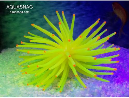 Фото Актиния силиконовая Ёжик RT-172L, желтая aquasnag.com