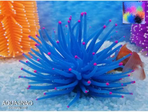 Фото Актиния силиконовая Ёжик RT-172М, синяя aquasnag.com