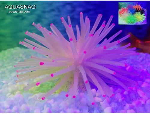 Фото Актиния силиконовая Ёжик RT-172S, белая aquasnag.com
