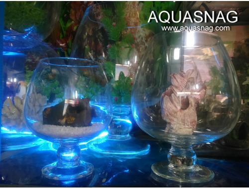 Фото Аквариум Бокал 11 л. (повышенной прочности) Смотреть