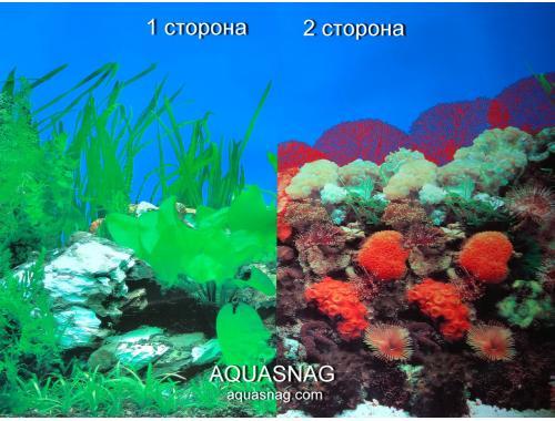 Фото Фон для аквариума двухсторонний, высота 50cм(9003-9001), цена за 15м Купить