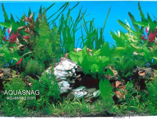 Фото Фон для аквариума односторонний высотой 30см(9003),  25 метров Смотреть