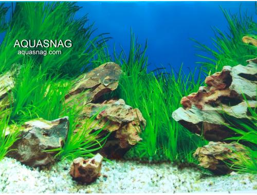 Фото Фон для аквариума односторонний высотой 30см(9022), цена 10см Смотреть