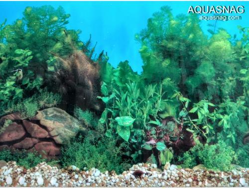 Фото Фон для аквариума, односторонний высотой 30см(9031) цена 10см Купить