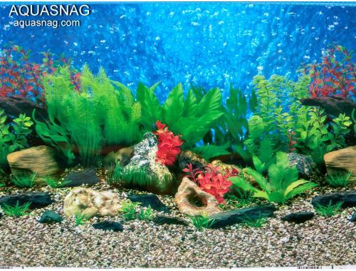 Фото Фон для аквариума односторонний высотой 30см, длина 25м (9019) Купить