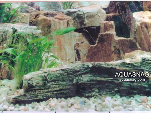 Фото Фон для аквариума односторонний высотой 40см(9023), цена 10см Купить