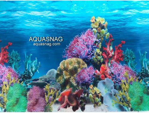 Фото Фон для аквариума односторонний высотой 40см,(9024), цена за 10см aquasnag.com
