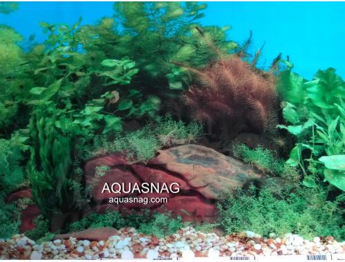 Фото Фон для аквариума односторонний высотой 40см(9031), цена за 10см Смотреть