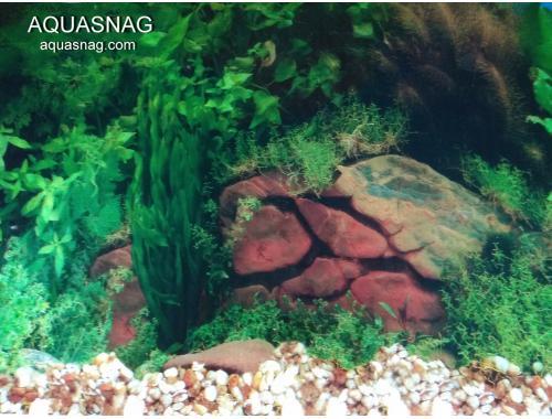 Фото Фон для аквариума односторонний высотой 40см(9031б), цена 10см aquasnag.com