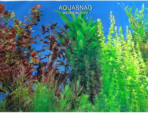 Фото Фон для аквариума односторонний высотой 40см(9033), цена 10см aquasnag.com