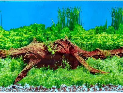 Фото Фон для аквариума  односторонний высотой 60см(9009), цена за 10см Купить
