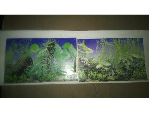 Фото Фон для аквариума плотный двухсторонний, высота 50cм(90-90), цена за 15м aquasnag.com