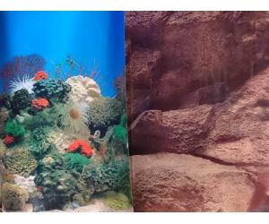 Фон для аквариума плотный двухсторонний, высота 60cм(9001-9005), цена за 10см