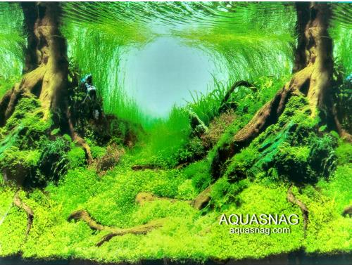 Фото Фон для аквариума тонкий односторонний высота 80см.(9045) Цена 10cм. aquasnag.com