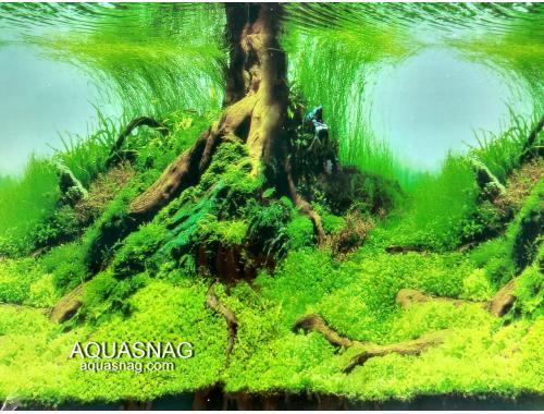 Фото Фон односторонний высотой 30см(9045), цена за 25м aquasnag.com