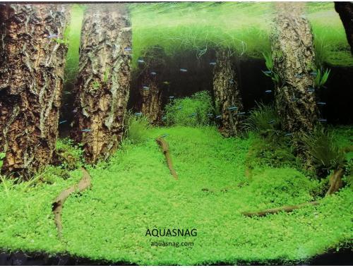 Фото Фон односторонний высотой 30см (9086), цена за 25м aquasnag.com