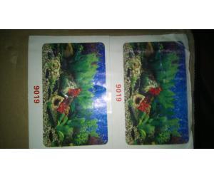 Фон плотный двухсторонний, высота 60cм(9019-9019), цена за 15м