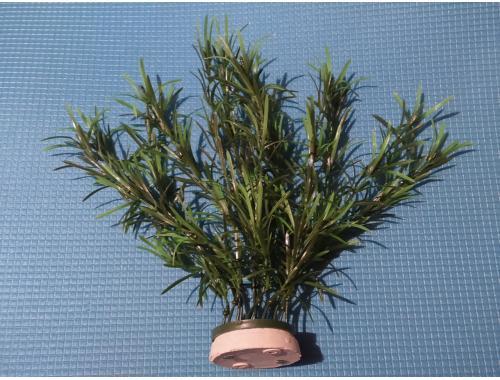 Фото Искусственное растение 60см, серия Sunny M- 113С aquasnag.com