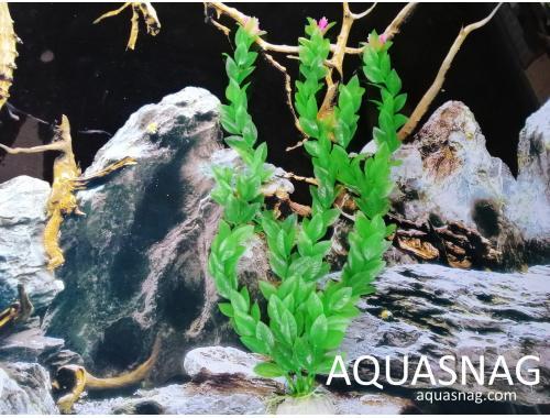 Фото Искусственное  растение Moon H-16/2,  40см aquasnag.com