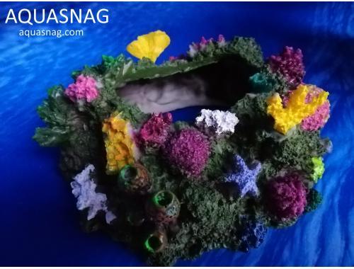 Фото Коралловый камень, дл 17.5см, ш16см, в8см Смотреть