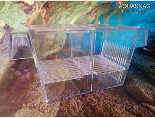 Фото Отсадник с крышечкой для рыб (20.5*10.6*10)см, пластик, CHICOS Купить