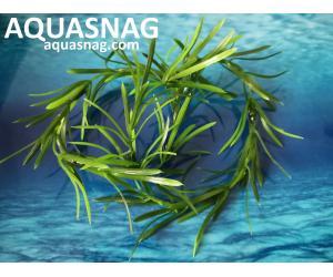 Плавающие растение,  (15*10*2)см