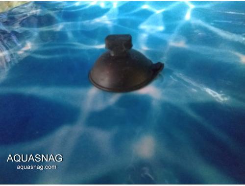 Фото Присоска  Atman большая aquasnag.com