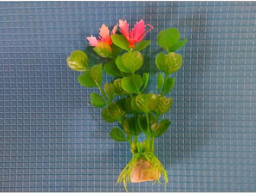 Фото Растение  10см, серии Е № 23 Смотреть
