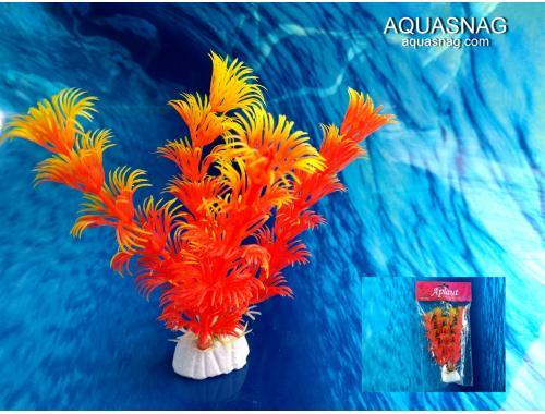 Фото Растение Aplant - 10см, Е 11 Смотреть
