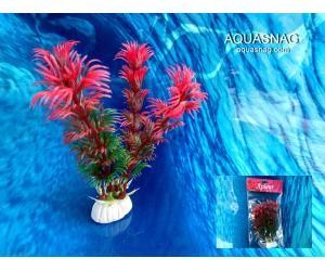 """Растение """"Aplant"""" - 10см, Е 19"""