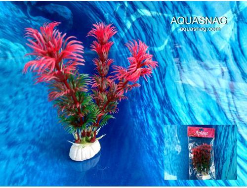 Фото Растение Aplant - 10см, Е 19 aquasnag.com
