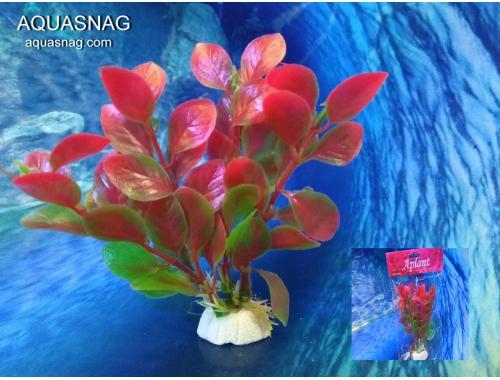 Фото Растение Aplant - 10см, Е 22 Купить