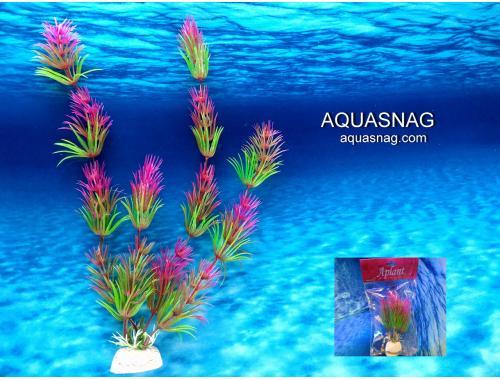 Фото Растение Aplant - 20см, F 21 Смотреть