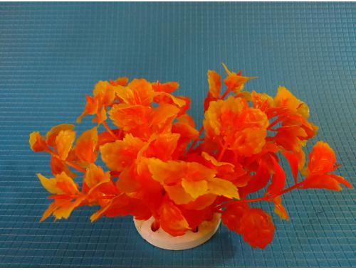 Фото Растение N-112D, 10см Купить