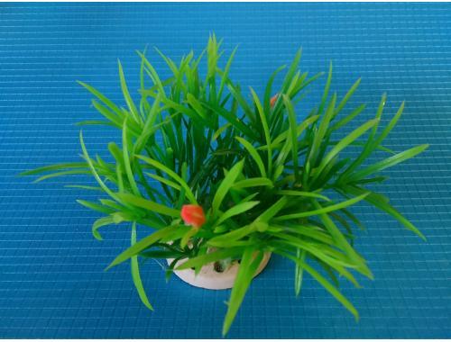 Фото Растение N- 113С, 10см aquasnag.com