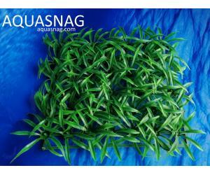 Растение коврик (18*18*2)см, трава