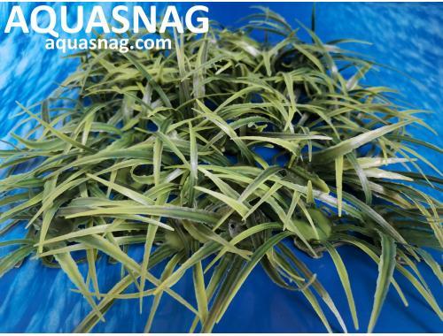 Фото Растение коврик (18*18*4)см,  трава длинная Смотреть