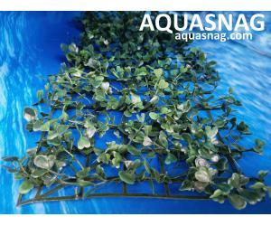 Растение коврик (40*18*2)см, трава