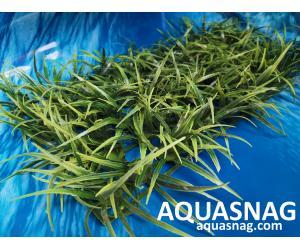 """Растение коврик (40*18*4)см,  """"трава длинная"""""""