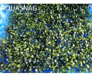 Растение  коврик (40*59*3)см, лист темно зелёный