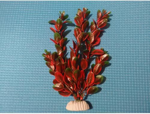 Фото Растение серии AP 022А - 20см Смотреть