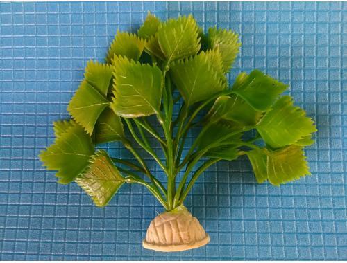 Фото Растение серии Е 25 - 10см aquasnag.com