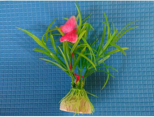 Фото Растение серии Е 5 - 10см Купить