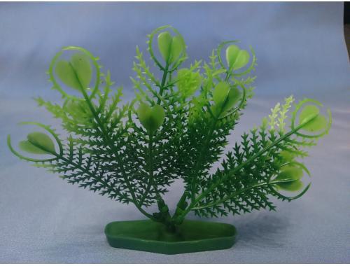 Фото Растение серии К № 2 - 10см aquasnag.com