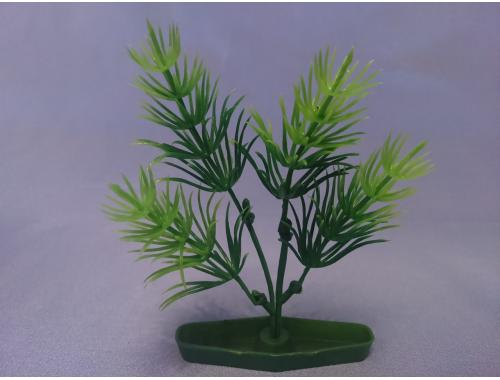 Фото Растение серии К № 3 - 10см Смотреть