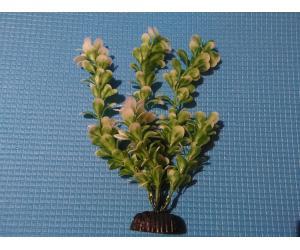 """Растение серии """"Sunny"""" AP-043Р1, 20см"""