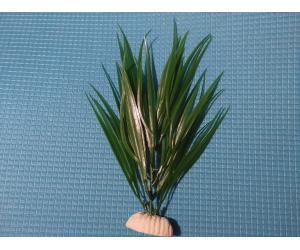 """Растение серии """"Sunny"""" AP-141В, 20см"""