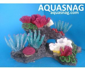 Скала KA -001 с кораллами